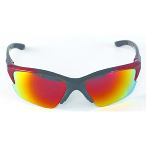 Aspex Windermere Ski Sunglasses