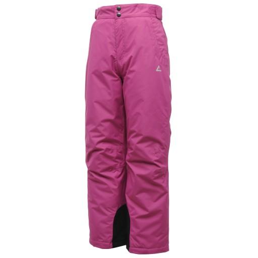 Dare2b Turn About Kid's Ski Pants - Plum Pie