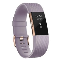 Fitbit Charge 2 Activity Tracker with Wrist Based Heart Rate Monitor - Lavender/Large