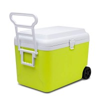 SUNMER 50L Cooler Box With 2 Ice Packs | Lime