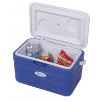 Kampa Family Cool Box 10 Litre